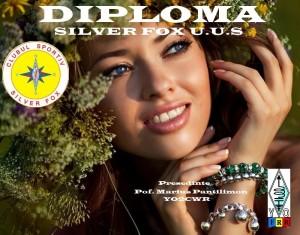 Diploma S.F. UUS